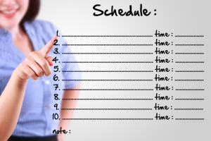 plan, schedule, business woman